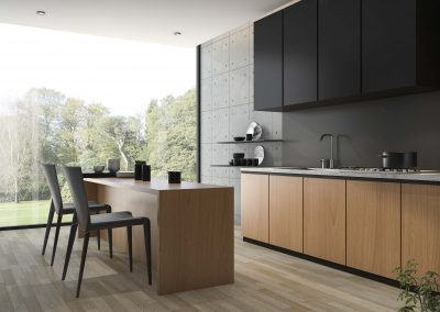 Kitchen_cabinet_black